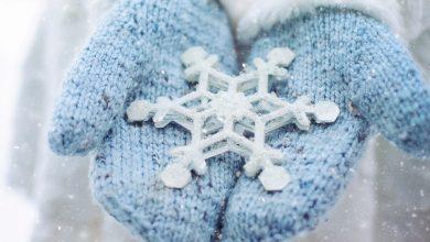 طريقة الزهرة الثلجية في كتابة الرواية